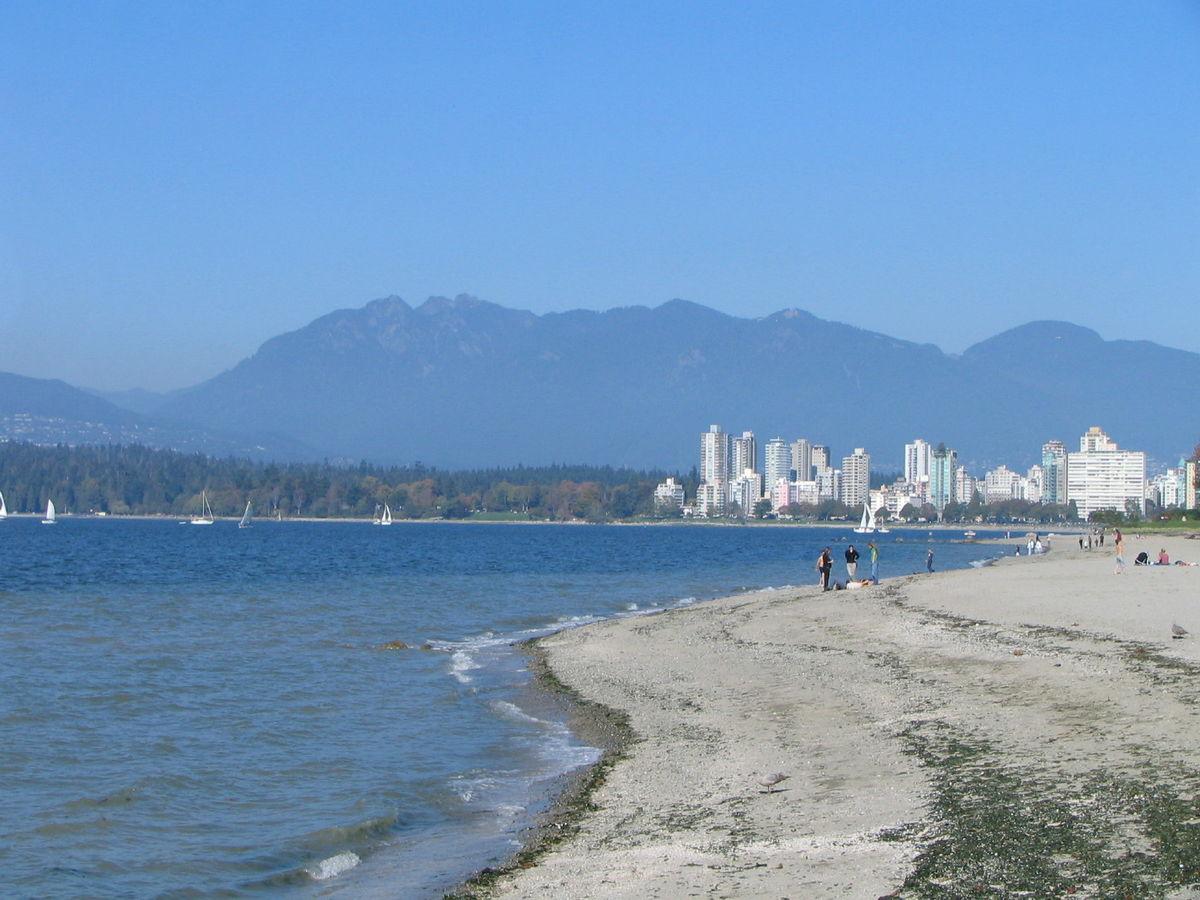近景拍摄海边阳光下的枫叶高清图片下载    pic.ffpic.
